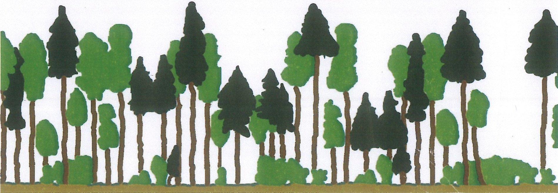 structuurrijk bos